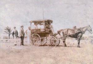 Crane Horse & Buggy